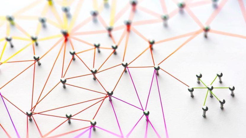 Partner & Netzwerk