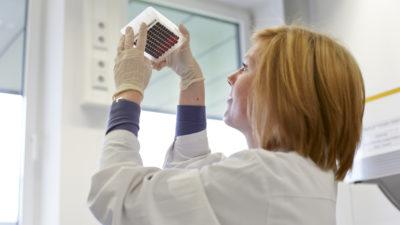 Prüfung von Blutproben im DKMS Life Science Lab