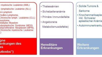 Indikationen für Stammzelltransplantationen